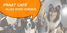 Honden communitie